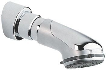 Grohe Relaxa Plus Head Shower Dual 12 28189